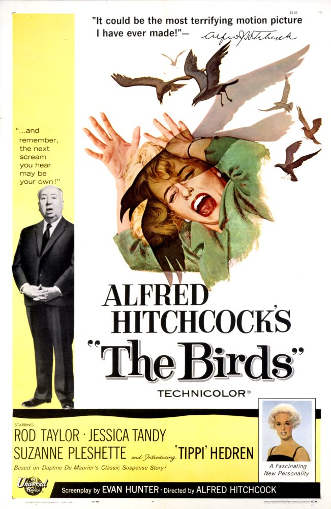 [EXTRA] La Natura secondo Hitchcock