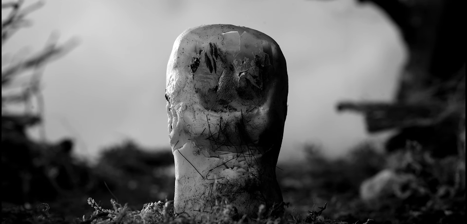 [NEWS] On line il corto in stop motion Toe