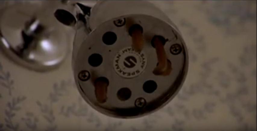 Una scena da Squirm - I Carnivori Venuti Dalla Savana (1976) di Jeff Lieberman con i vermi che escono dal soffione della doccia.