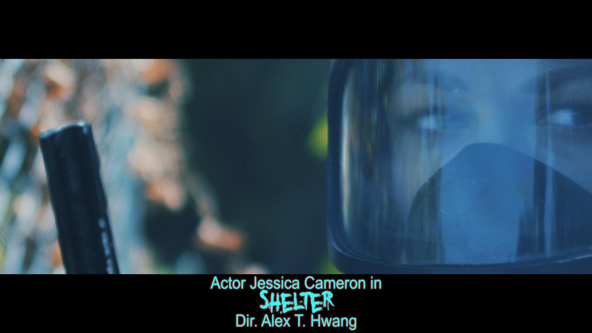 Shelter - Jessica Cameron