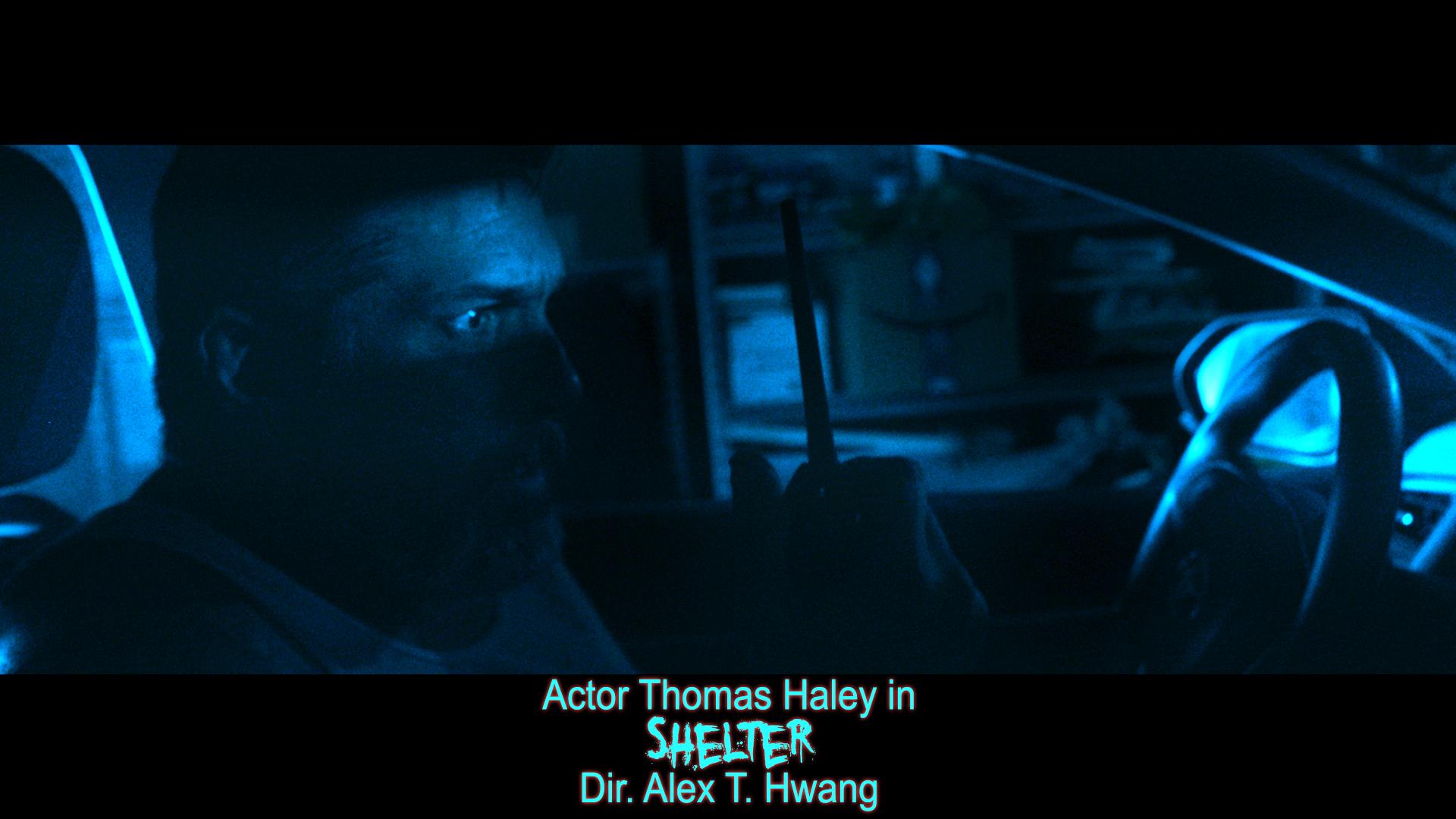Shelter - Thomas Haley